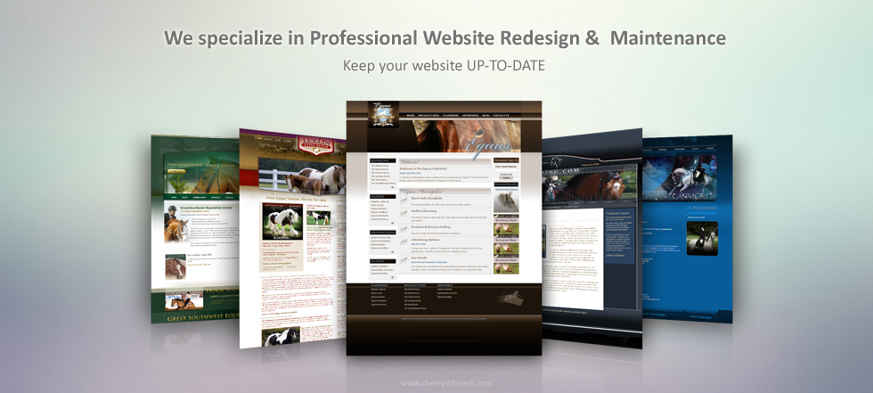 Cruz Online Marketing Houston SEO